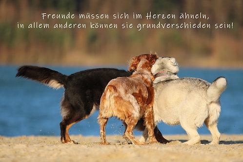 """Karte """"Drei Freunde"""" Freundschaft"""
