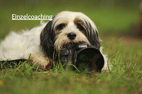 individuelles Einzelcoaching Fotografie