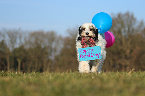 """Geburtstagskarte """"Hund mit Luftballon"""" Klappkarte"""