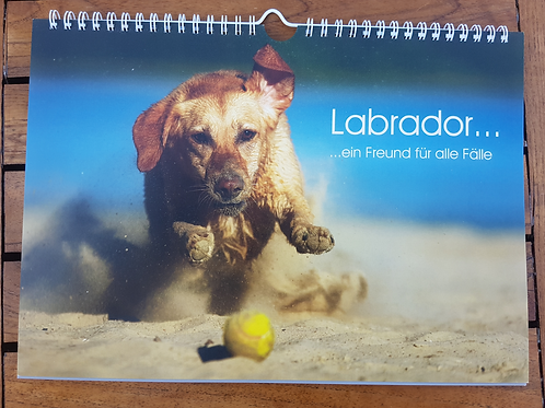 Rassekalender Labrador 2021