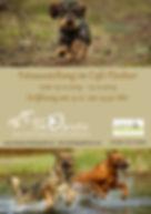 Flyer Fotoausstellung.jpg
