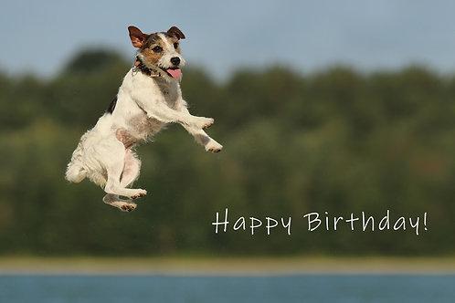 "Geburtstagskarte ""springender Hund"" Karte Happy Birthday"
