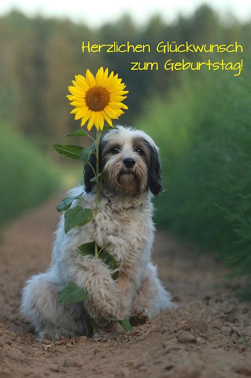 """Geburtstagskarte """"Hund mit Blume"""" Klappkarte"""
