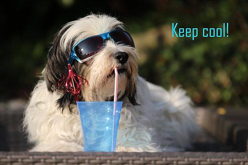 "Karte ""Keep cool"""