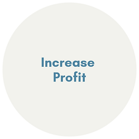 INCREASE PROFIT.png
