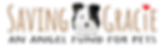 SavingGracie-Logo-Horizontal-14x4-Portra