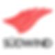 südwind_buchwelt_logo.png