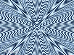Optical Flower-Paul Micarelli