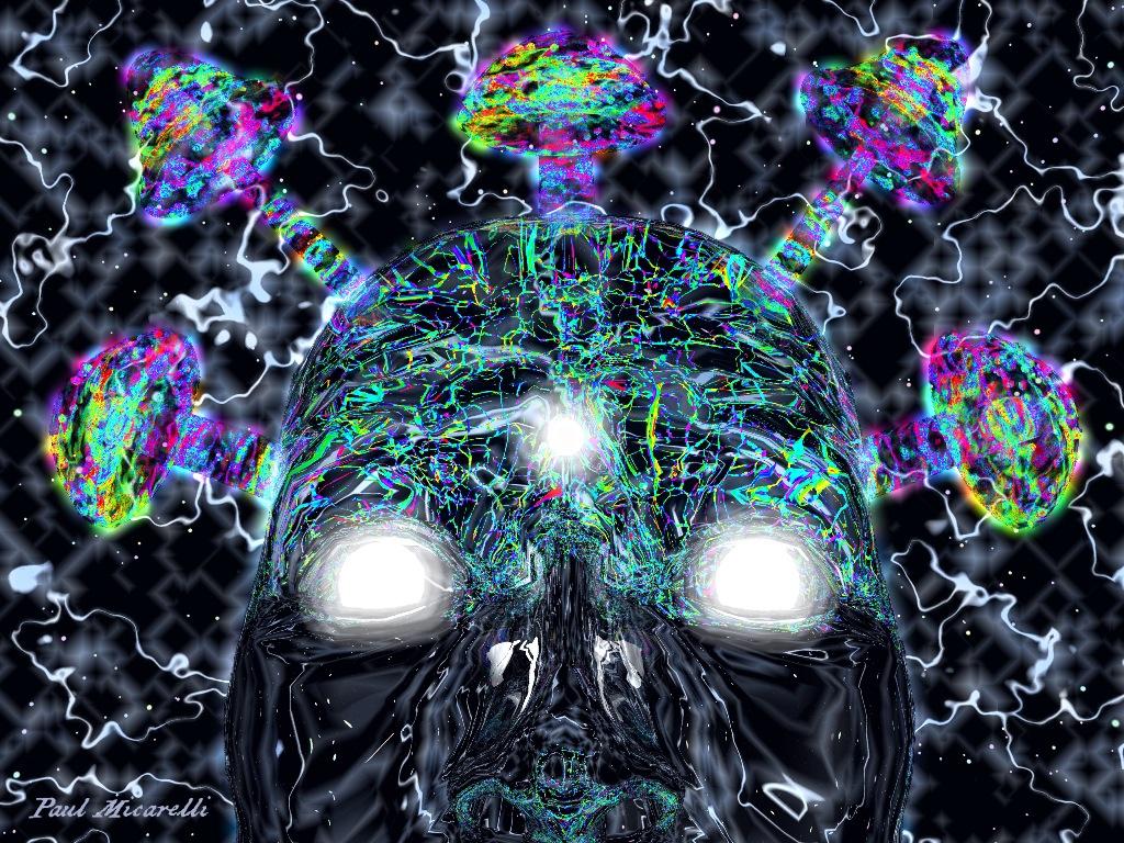 Psychedelic Symbiosis-Paul Micarelli