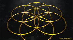 Seed of Life-Gold on Black-Paul Micarell