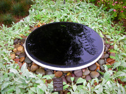 Circle Reflecting Pool-Paul Micarelli