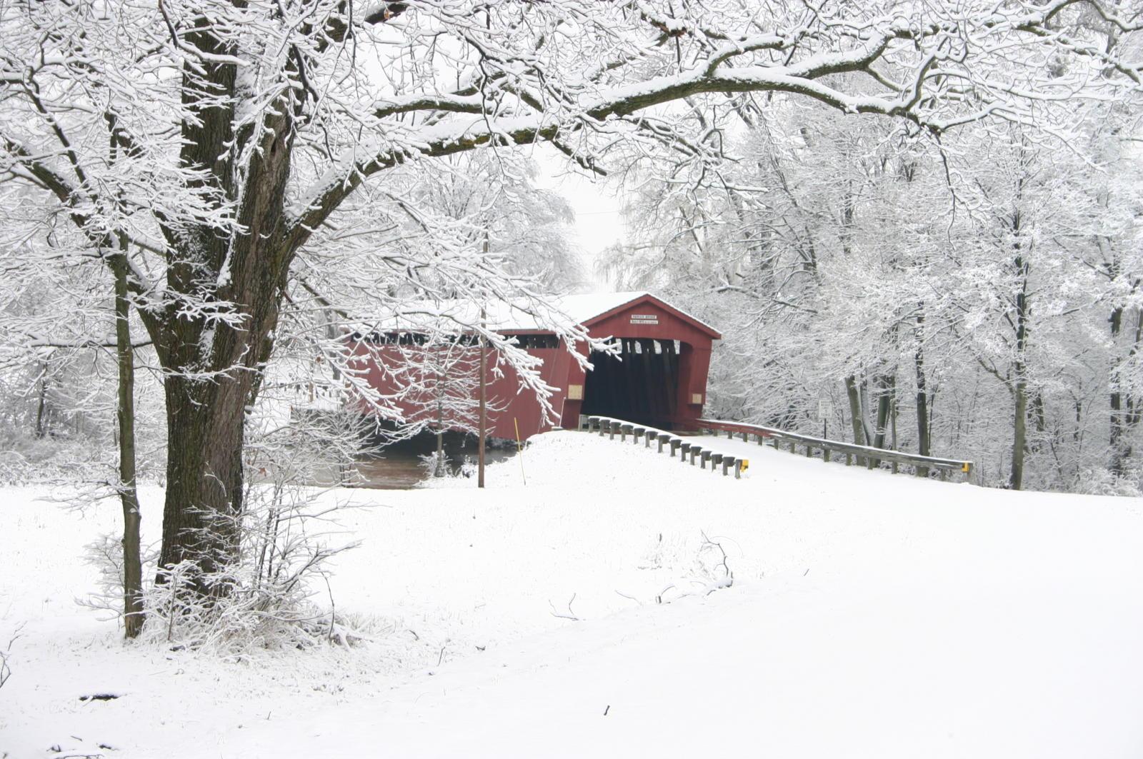 Winter Parker