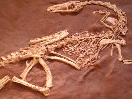 BREAKING: Paleontologists discover remains of the dinosaur Jesus rode.