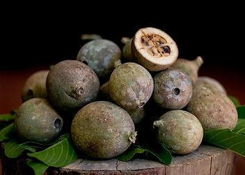 jagua-fruit-henna-city-wb.webp