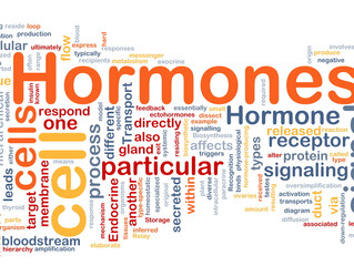 Health Information Session: Hormones & Your Health