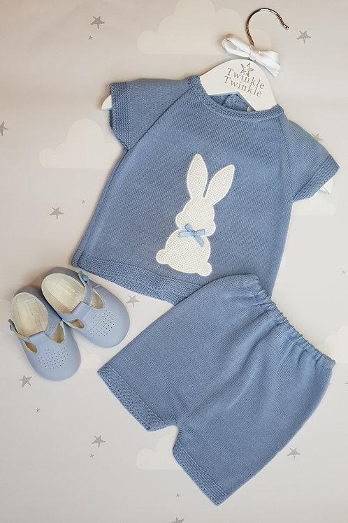 Dandelion Blue Bunny Set