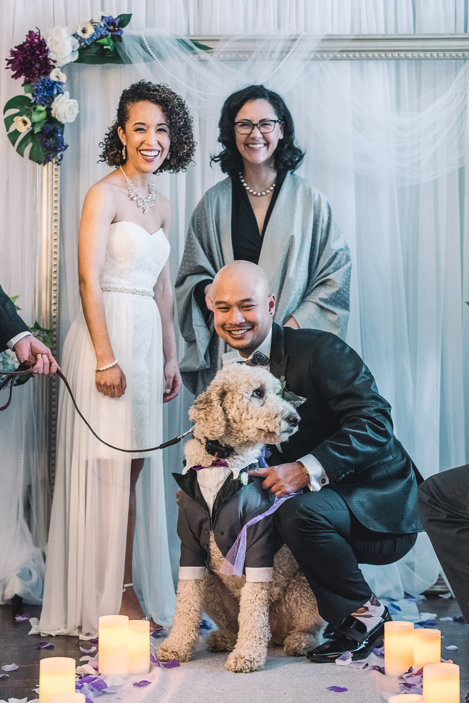 Toronto Wedding with Pets