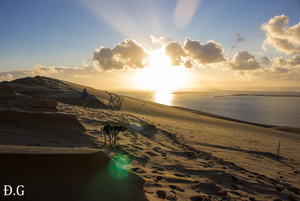 La Dune du Pilat, Sud du bassin d'Arcachon