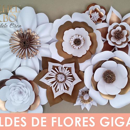 COMBO DE 6 MOLDES DE FLORES GIGANTES