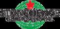 SGSI Logo-clear.png