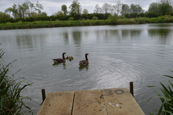 Surmans lake (34).JPG
