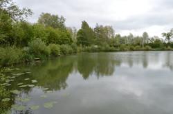Surmans lake (22).JPG