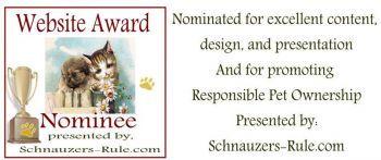 top-award-nominee-2.jpg