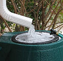 rainwater collector.jpg