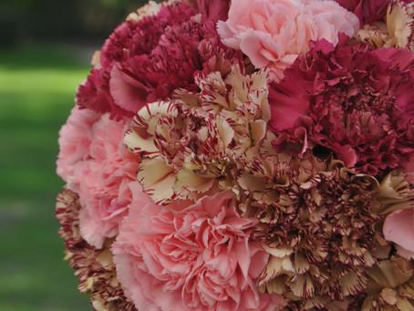 Fleurs de fleuriste .... OEILLETS