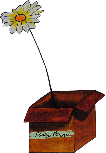 Une fleur dans la boite