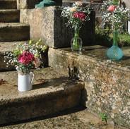 Vases et carafes