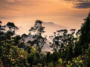 Kodaikanal-tempotraveler-Keralatourism-