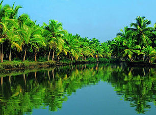 Alleppey House boat cruise and night stay , tempo traveller rental for Alleppey , Alleppey back water cruise ,tempo traveller for Alleppey drop
