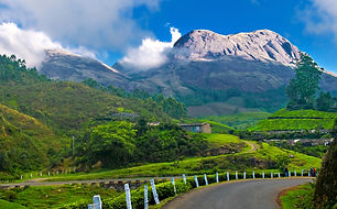 Munnar  hill station located in the Idukki district Cochin to munnar 145 kilometer tempo traveller need 4 to 5 hours , tempo traveler best for munnar local sightseeing need