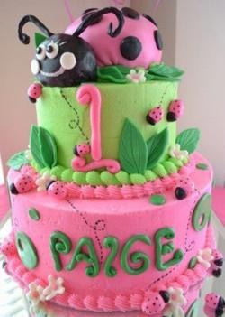 Paige Bug