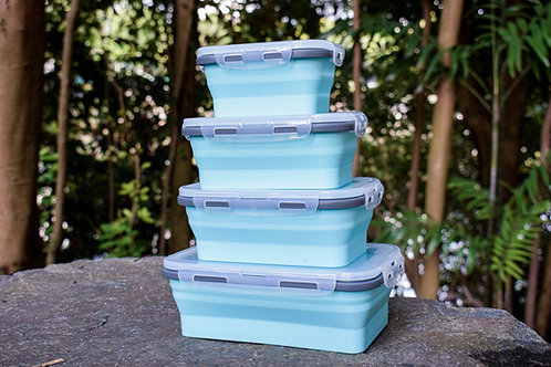Collapsible Lunch Box Series (Set of 4)