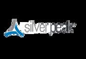Silver-Peak-3-Color (1).png