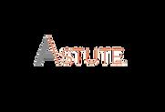 astute-logo-horz-color 1.png