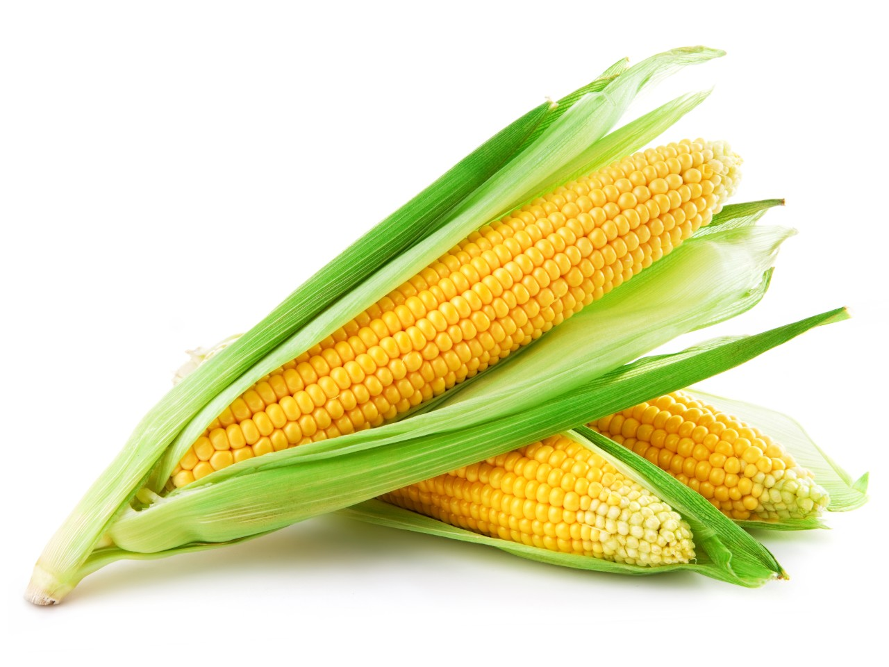 Yes, Corn on the Cob is Good for You! | Registered Dietitian ...