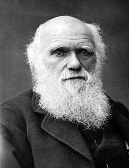 d9eac0b3dd_Darwin.jpg