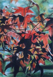 Autumn colors 02