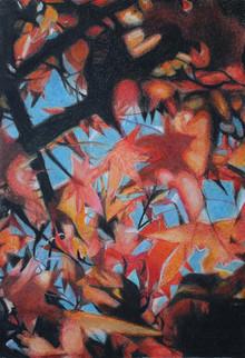 Autumn colors 03