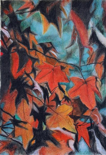 Autumn colors 01