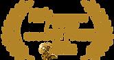 Best-Shorts-HUMANITARIAN-Grand-gold-2016