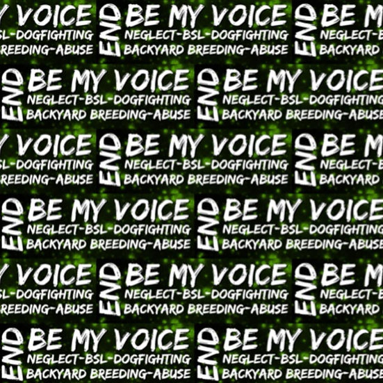 5.3 BE MY VOICE, END