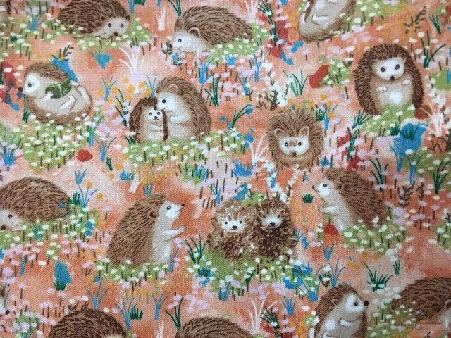 4.19-31 Hedgehog, peach