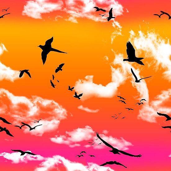 # 1.19-50 Sky with birds orange/pink