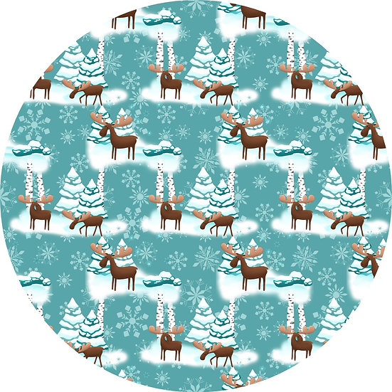 # 8.19-66 Winter Moose -3