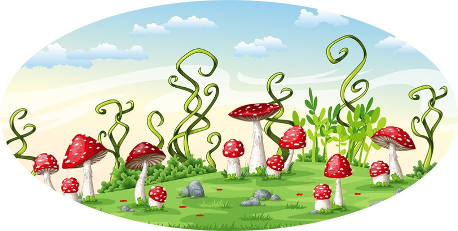 # 10.19-11 Mushrooms, landscape