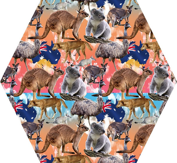 Australia multi color light background